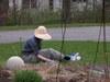 Gardenlaurie1_005