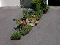 Gardenmemday_023